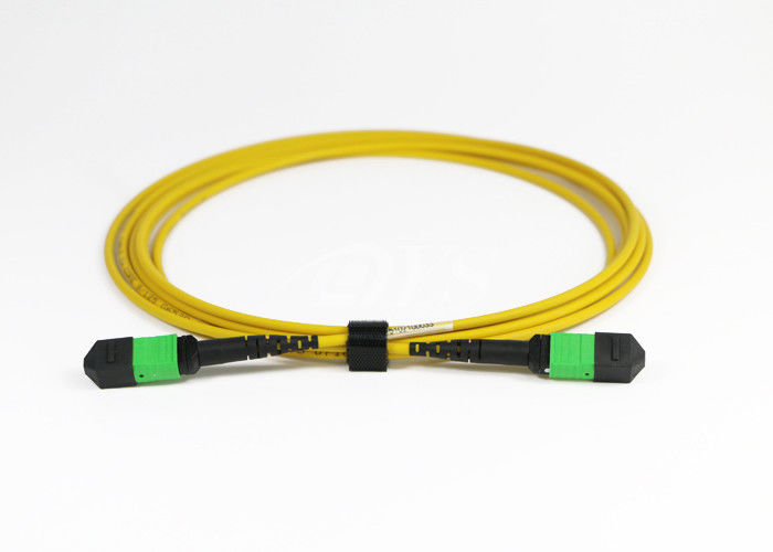 Chiny 24 Core MPO / MTP 3.0mm 3M Cable Optical Fiber Patch Cord dostawca